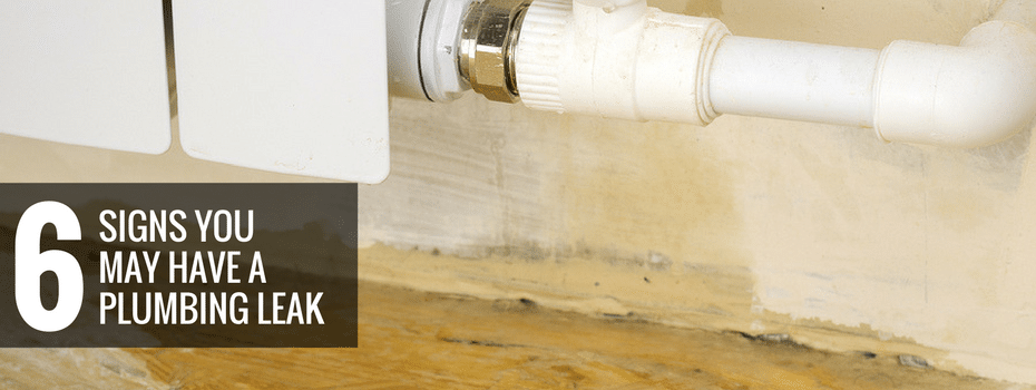 6 Signs You May Have a Plumbing Leak