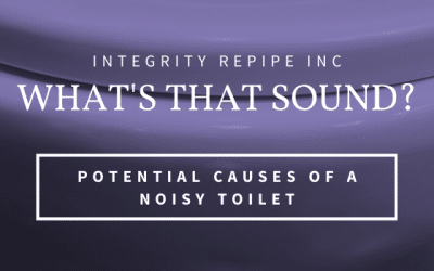 What's that Sound? Potential Causes of a Noisy Toilet